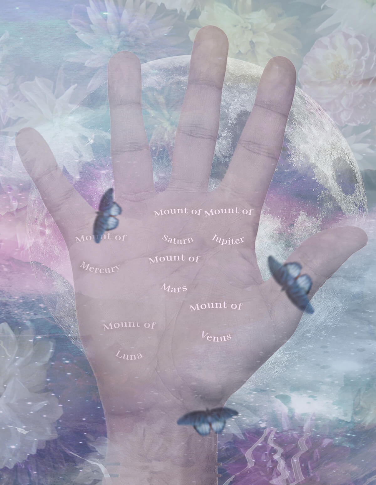 mounts on hand palmistry