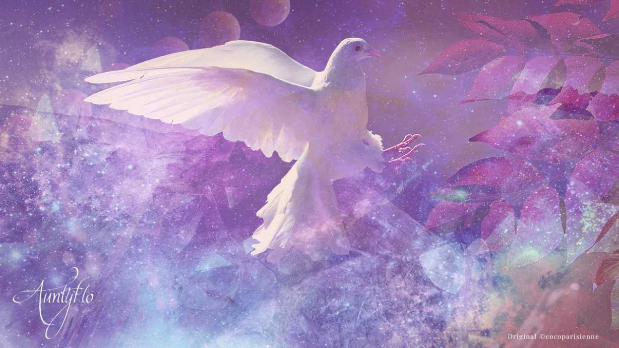 Biblical meaning of birds in dreams