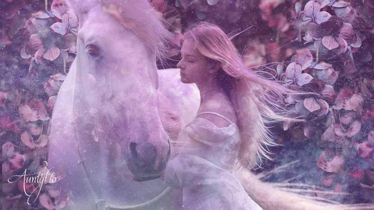 Horse Dream Meaning Interpret Now Auntyflo Com