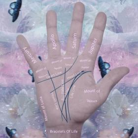 Palmistry Basic Guide Hands And Lines of Palmistry