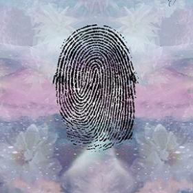 Loop on finger prints palmistry