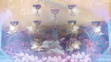 Nine of cups banner image